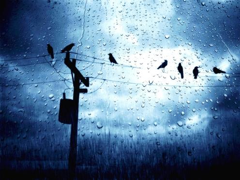 Under_rainy_skies_Wallpaper__yvt2